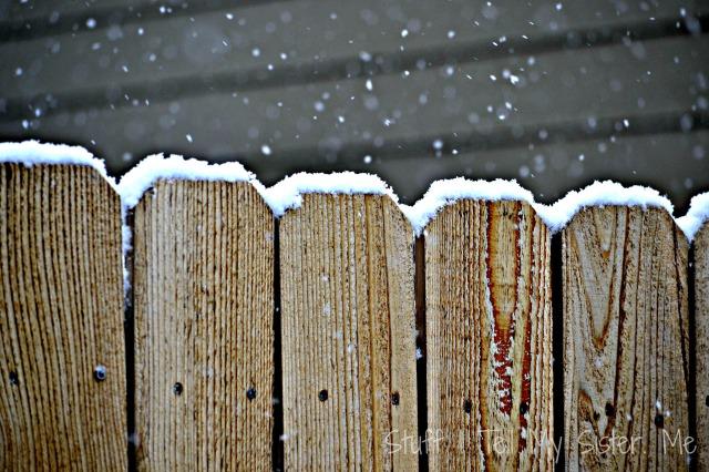 snow in feb 010