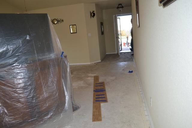 new floors 013