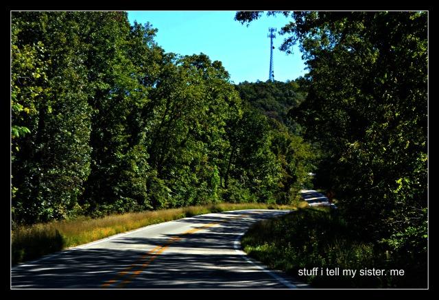 fall vacation lorri curve road