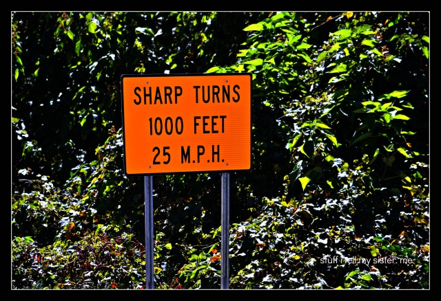 fall vacation lorri sharp turn