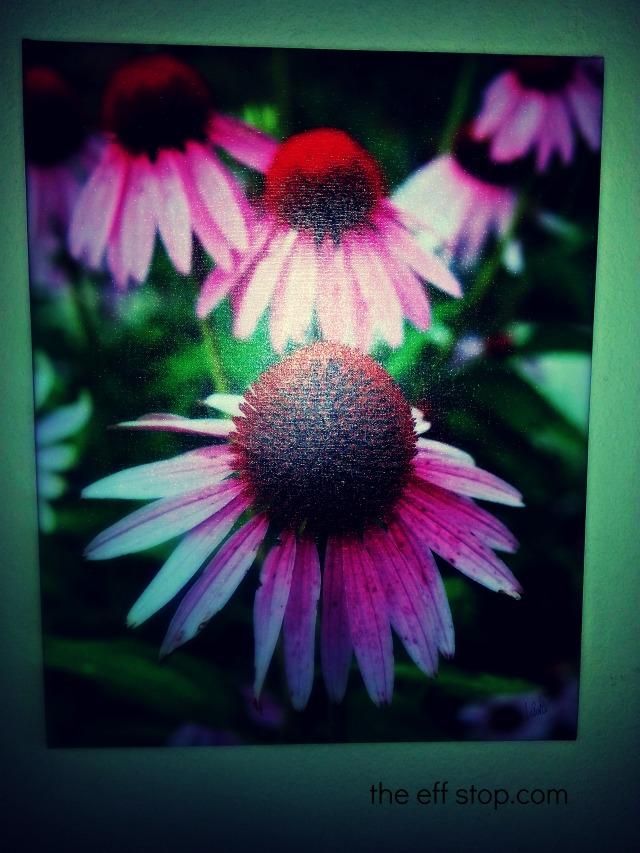 lorri flower pic