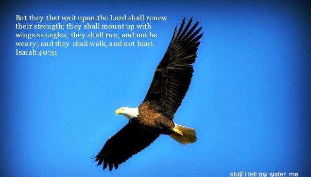 dad eagle verse