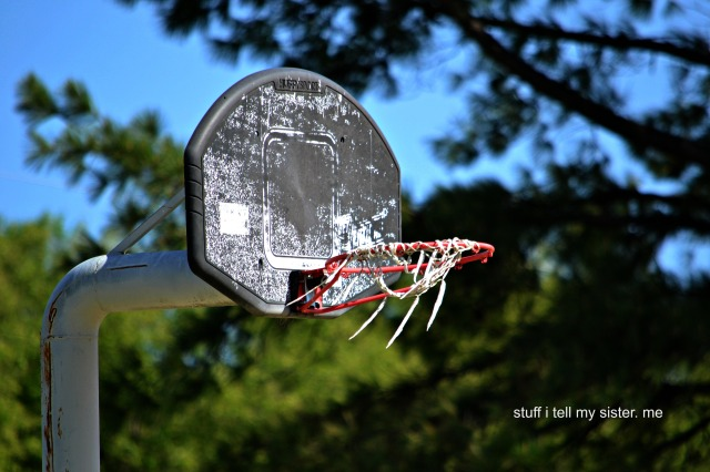 dumpster diving basketball goal