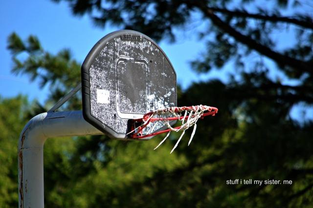 dumpster diving basketball goal