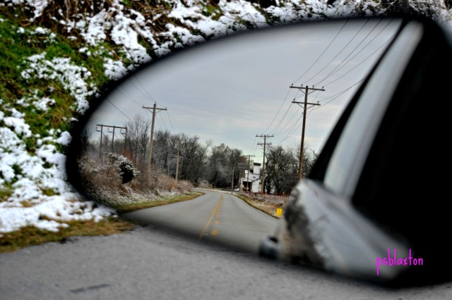tree farm rearview mirror