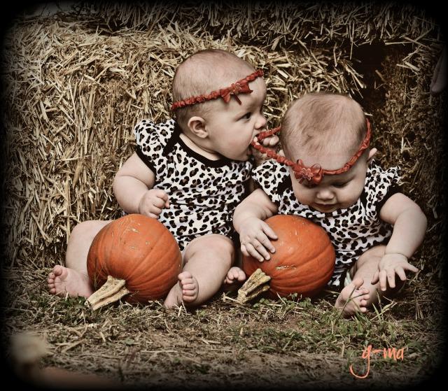 pumpkin girls 2015